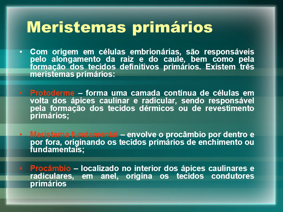 Meristemas primários Com origem em células embrionárias, são responsáveis pelo alongamento da raiz e do caule, bem como pela formação dos tecidos defi