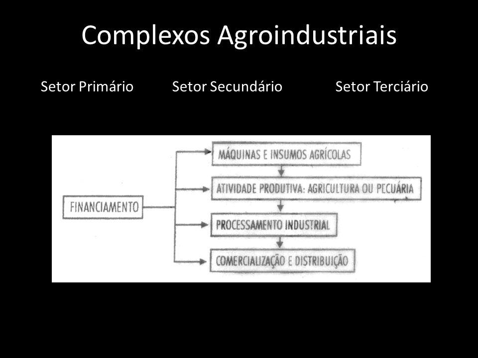 Complexos Agroindustriais Setor PrimárioSetor SecundárioSetor Terciário