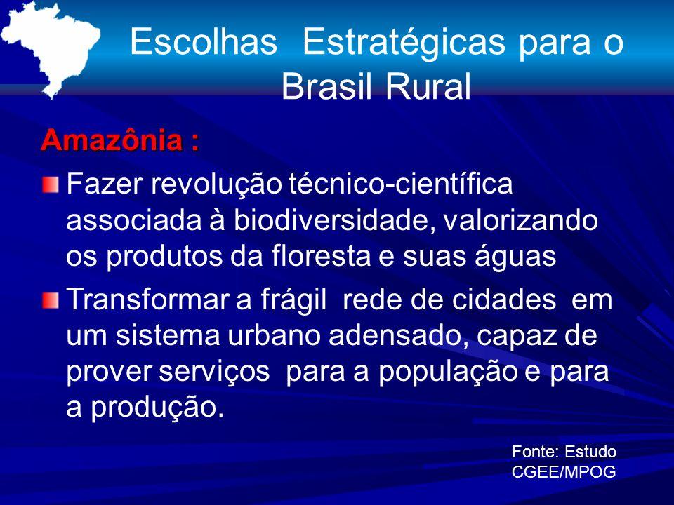 Escolhas Estratégicas para o Brasil Rural Amazônia : Fazer revolução técnico-científica associada à biodiversidade, valorizando os produtos da florest