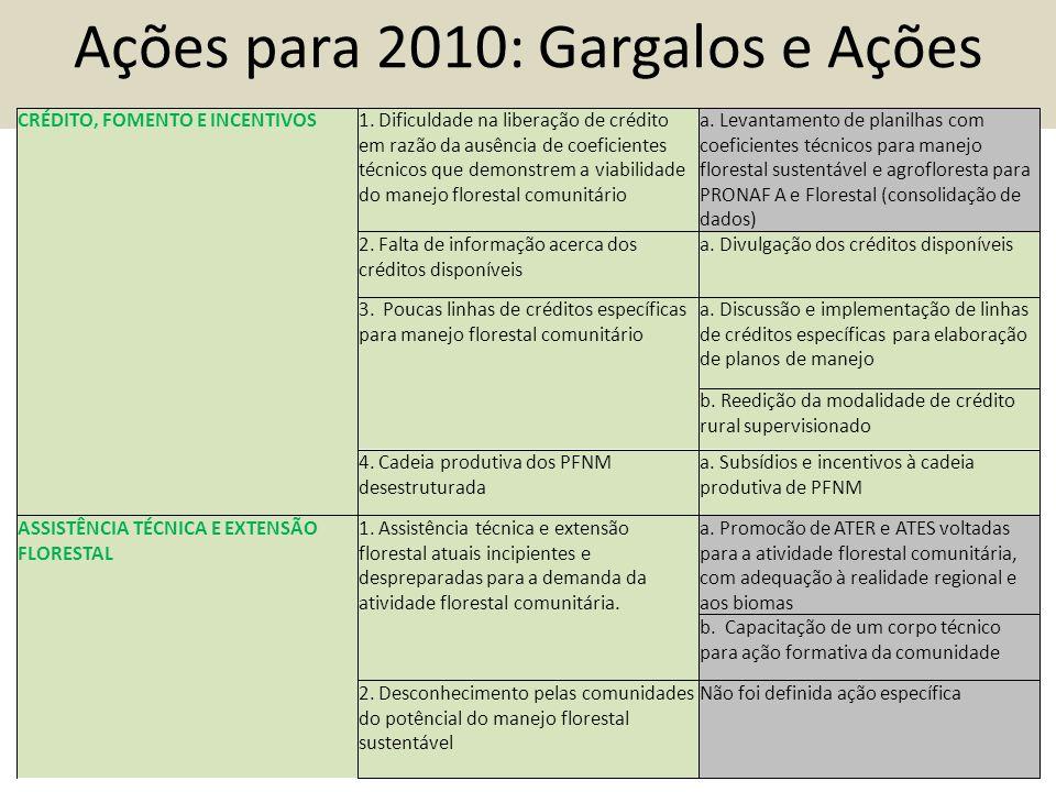 Ações para 2010: Gargalos e Ações CRÉDITO, FOMENTO E INCENTIVOS1.