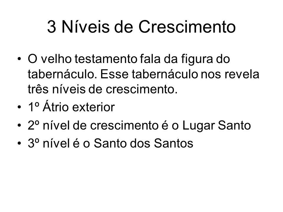 3 Níveis de Crescimento O velho testamento fala da figura do tabernáculo. Esse tabernáculo nos revela três níveis de crescimento. 1º Átrio exterior 2º