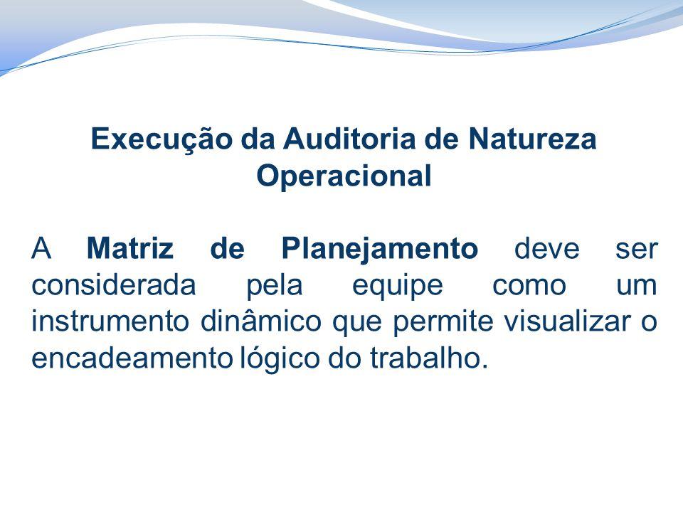 Execução da Auditoria de Natureza Operacional A Matriz de Planejamento deve ser considerada pela equipe como um instrumento dinâmico que permite visualizar o encadeamento lógico do trabalho.