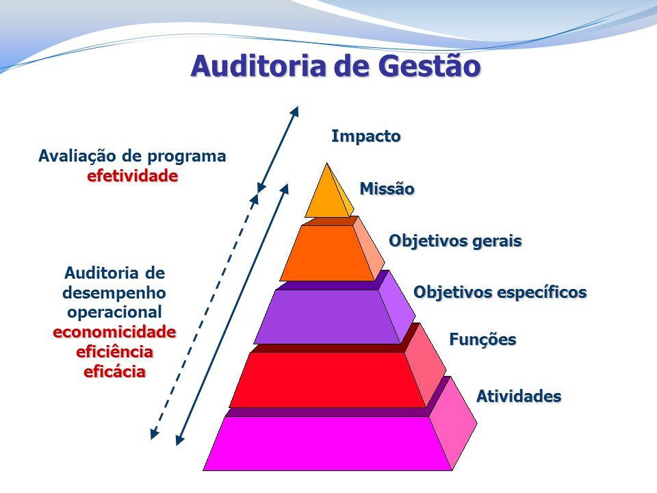 Auditoria de Gestão Missão Objetivos gerais Objetivos específicos Funções Atividades Auditoria de desempenho operacionaleconomicidadeeficiênciaeficáci
