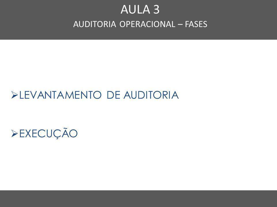 Nome do Curso em uma linha AULA 3 AUDITORIA OPERACIONAL – FASES  LEVANTAMENTO DE AUDITORIA  EXECUÇÃO