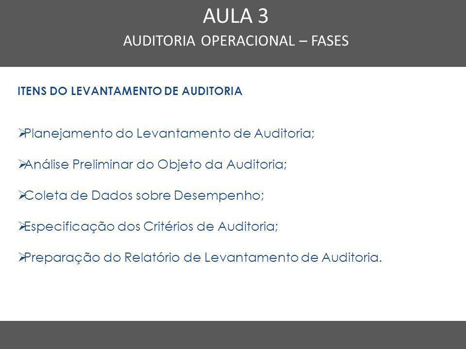 Nome do Curso em uma linha AULA 3 AUDITORIA OPERACIONAL – FASES ITENS DO LEVANTAMENTO DE AUDITORIA  Planejamento do Levantamento de Auditoria;  Anál