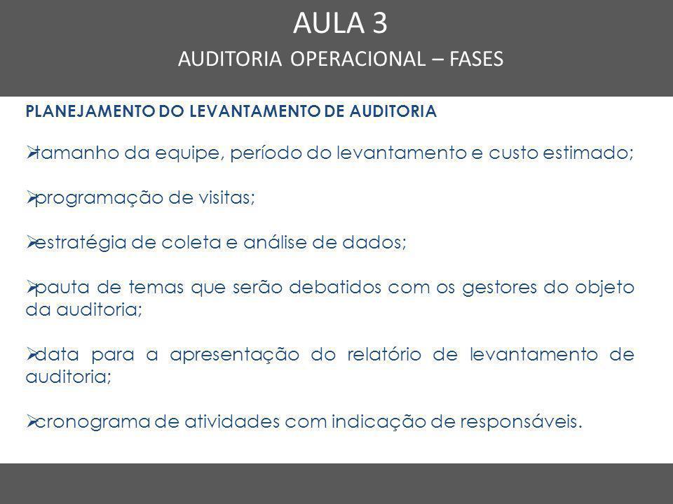 Nome do Curso em uma linha AULA 3 AUDITORIA OPERACIONAL – FASES PLANEJAMENTO DO LEVANTAMENTO DE AUDITORIA  tamanho da equipe, período do levantamento