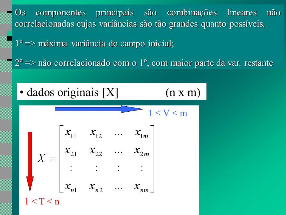 Os componentes principais são combinações lineares não correlacionadas cujas variâncias são tão grandes quanto possíveis.