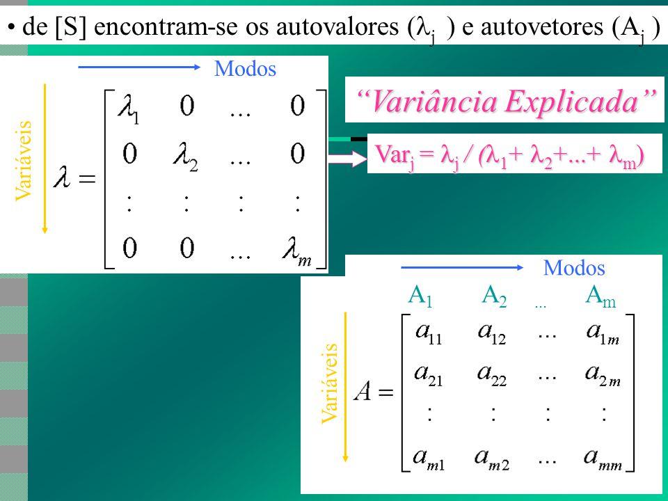 de [S] encontram-se os autovalores ( j ) e autovetores (A j ) Var j = j / ( 1 + 2 +...+ m ) Variância Explicada A 1 A 2...