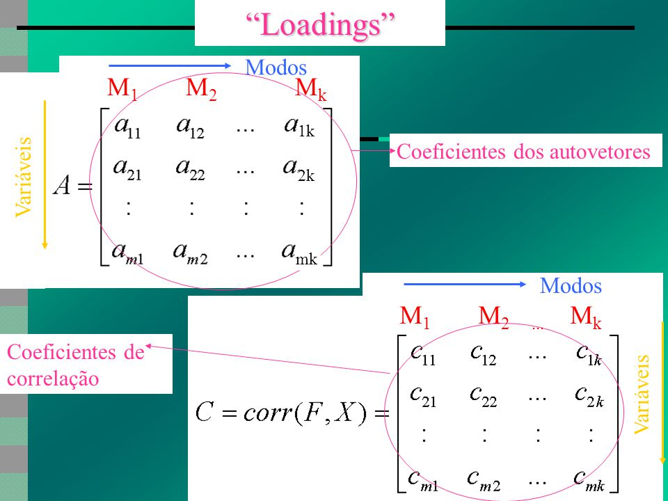 Loadings Coeficientes dos autovetores M 1 M 2 M k 1k 2k mk M 1 M 2...