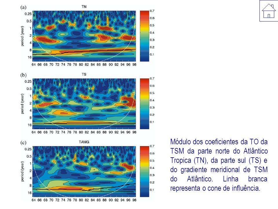 Módulo dos coeficientes da TO da TSM da parte norte do Atlântico Tropica (TN), da parte sul (TS) e do gradiente meridional de TSM do Atlântico.