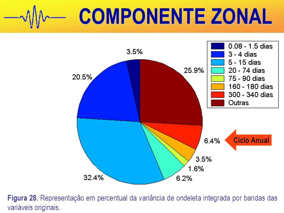 COMPONENTE ZONAL Figura 28.