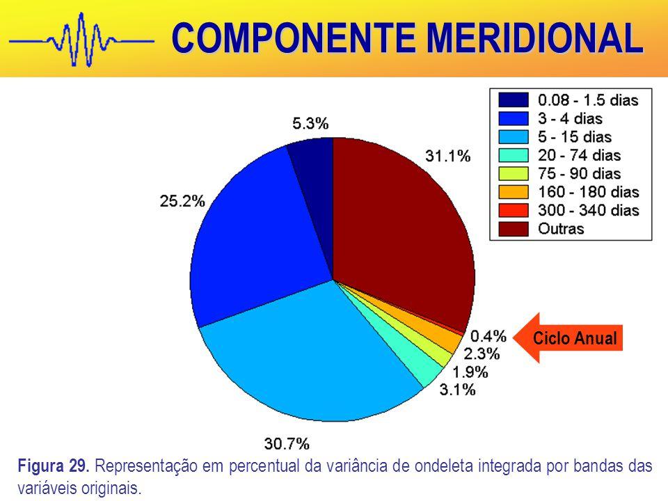 COMPONENTE MERIDIONAL Figura 29.