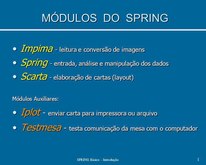 SPRING Básico - Introdução 1 MÓDULOS DO SPRING Impima - leitura e conversão de imagensImpima - leitura e conversão de imagens Spring - entrada, anális
