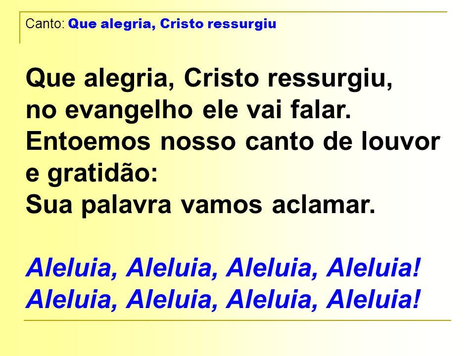 Canto: Que alegria, Cristo ressurgiu Que alegria, Cristo ressurgiu, no evangelho ele vai falar.