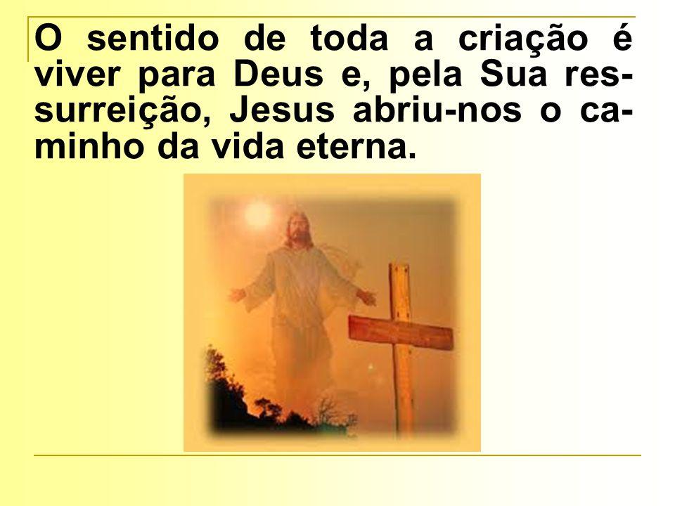 O sentido de toda a criação é viver para Deus e, pela Sua res- surreição, Jesus abriu-nos o ca- minho da vida eterna.