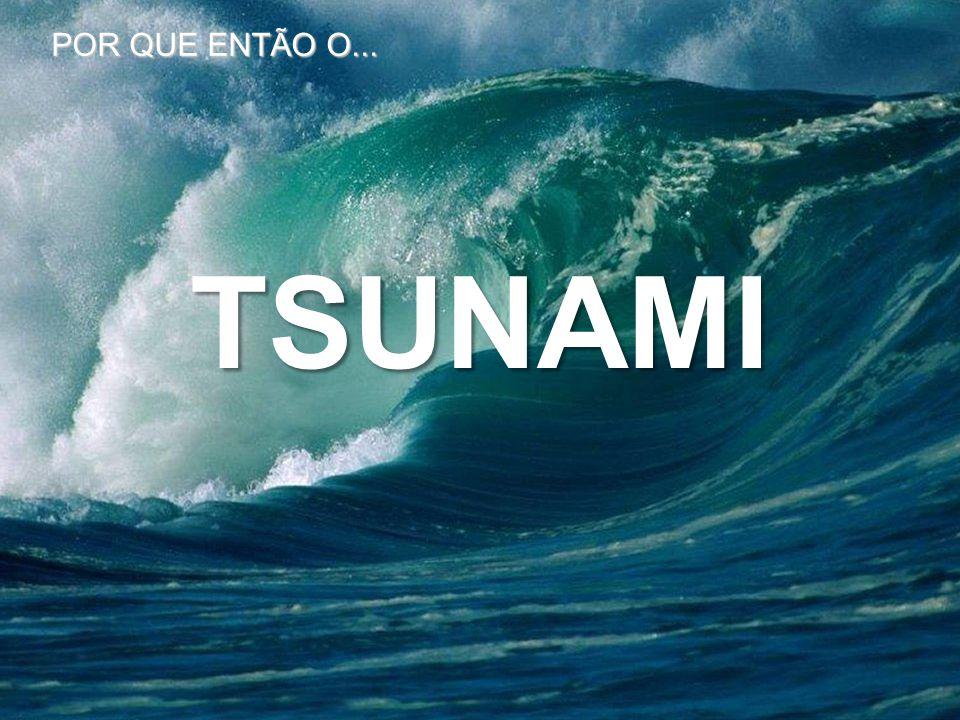 TSUNAMI POR QUE ENTÃO O...