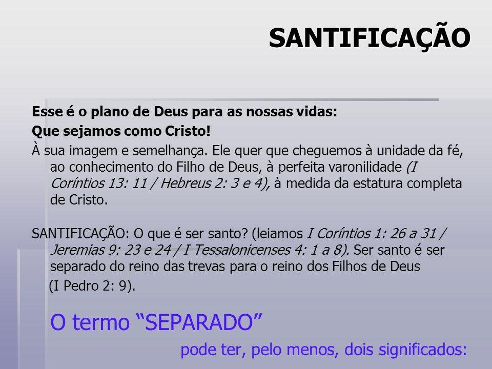 SANTIFICAÇÃO Esse é o plano de Deus para as nossas vidas: Que sejamos como Cristo.