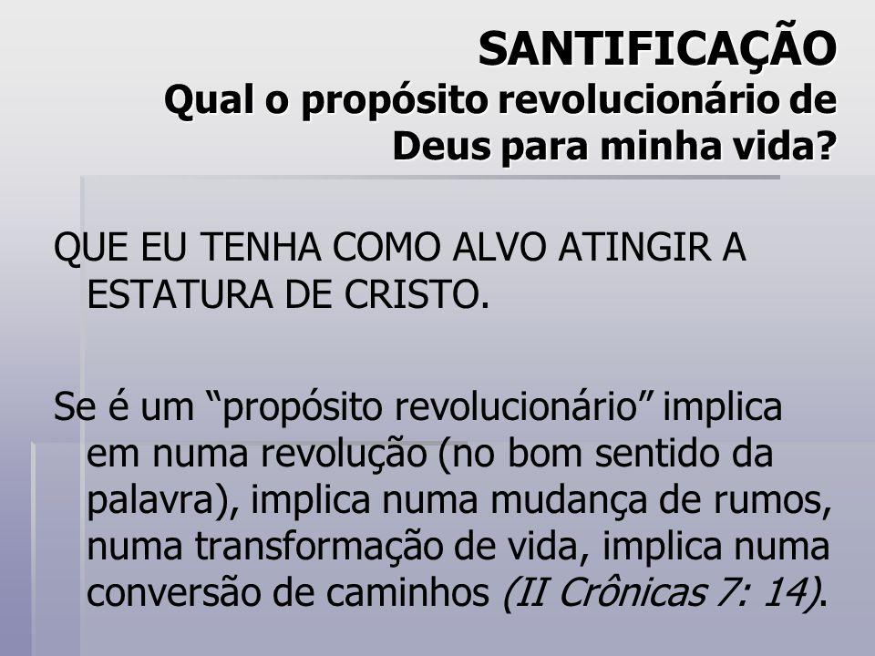 SANTIFICAÇÃO Qual o propósito revolucionário de Deus para minha vida.