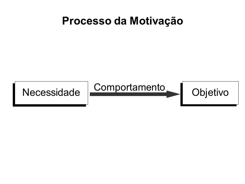 Processo da Motivação NecessidadeObjetivo Comportamento