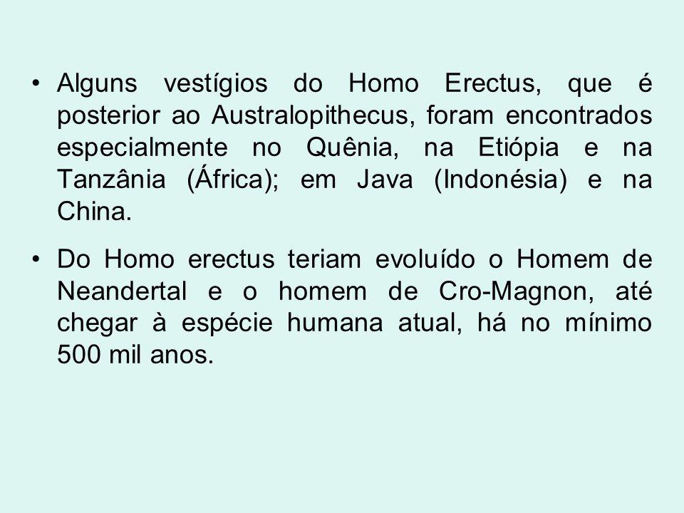 Alguns vestígios do Homo Erectus, que é posterior ao Australopithecus, foram encontrados especialmente no Quênia, na Etiópia e na Tanzânia (África); e