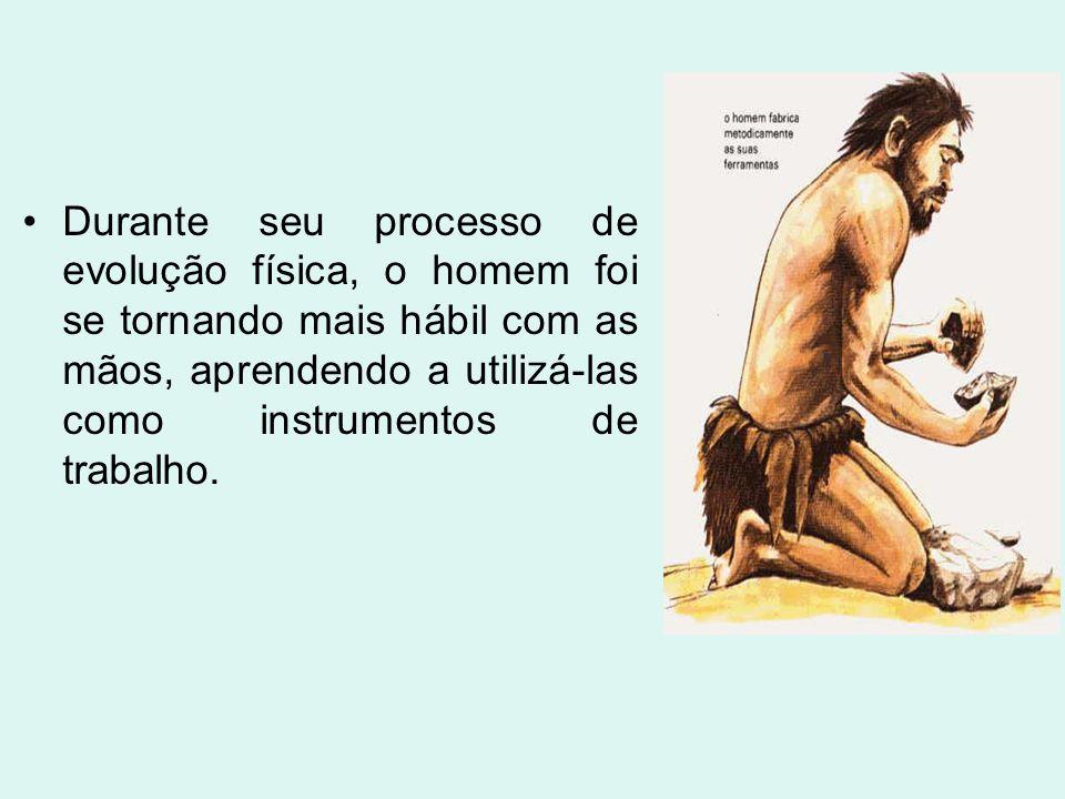 Durante seu processo de evolução física, o homem foi se tornando mais hábil com as mãos, aprendendo a utilizá-las como instrumentos de trabalho.