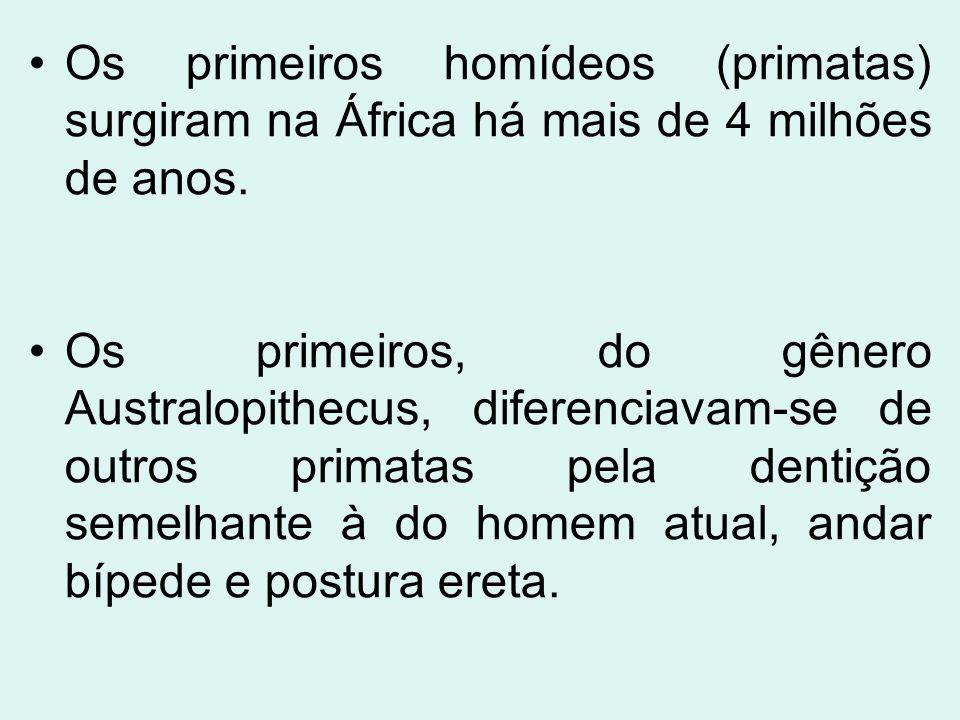 Os primeiros homídeos (primatas) surgiram na África há mais de 4 milhões de anos. Os primeiros, do gênero Australopithecus, diferenciavam-se de outros