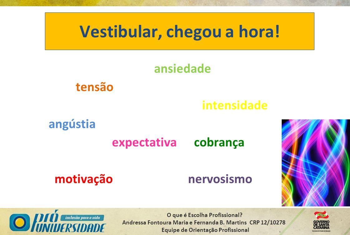 O que é Escolha Profissional? Andressa Fontoura Maria e Fernanda B. Martins CRP 12/10278 Equipe de Orientação Profissional Vestibular, chegou a hora!