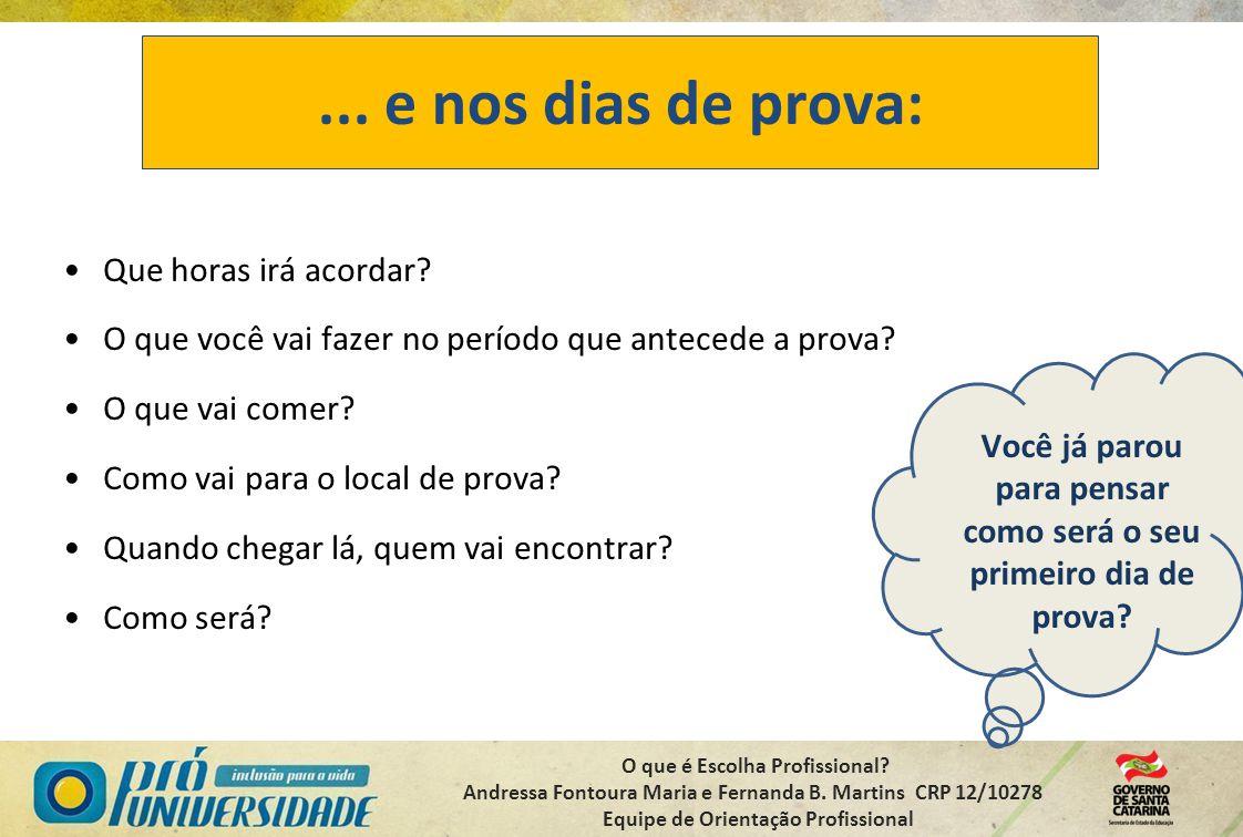 O que é Escolha Profissional? Andressa Fontoura Maria e Fernanda B. Martins CRP 12/10278 Equipe de Orientação Profissional... e nos dias de prova: Que