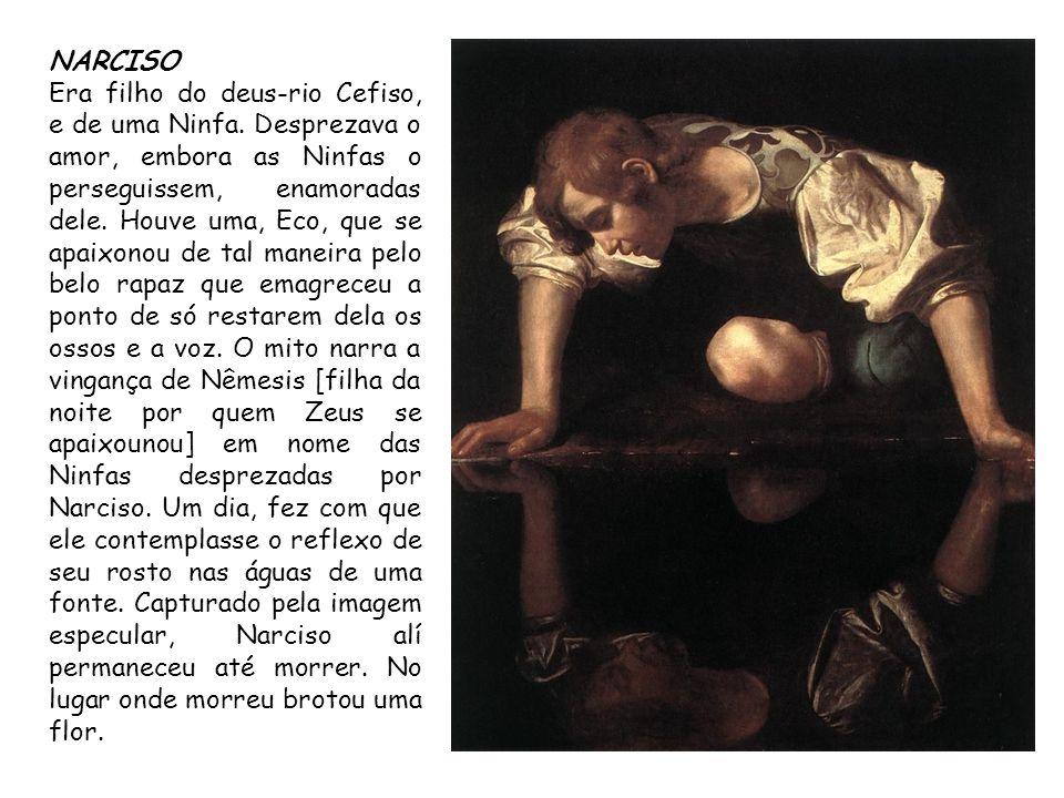 NARCISO Era filho do deus-rio Cefiso, e de uma Ninfa. Desprezava o amor, embora as Ninfas o perseguissem, enamoradas dele. Houve uma, Eco, que se apai