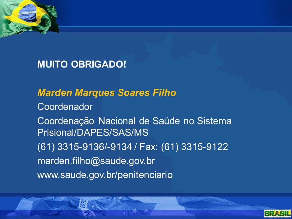MUITO OBRIGADO! Marden Marques Soares Filho Coordenador Coordenação Nacional de Saúde no Sistema Prisional/DAPES/SAS/MS (61) 3315-9136/-9134 / Fax: (6