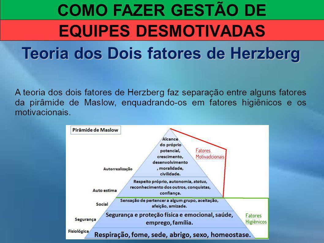 COMO FAZER GESTÃO DE EQUIPES DESMOTIVADAS Teoria dos Dois fatores de Herzberg A teoria dos dois fatores de Herzberg faz separação entre alguns fatores da pirâmide de Maslow, enquadrando-os em fatores higiênicos e os motivacionais.