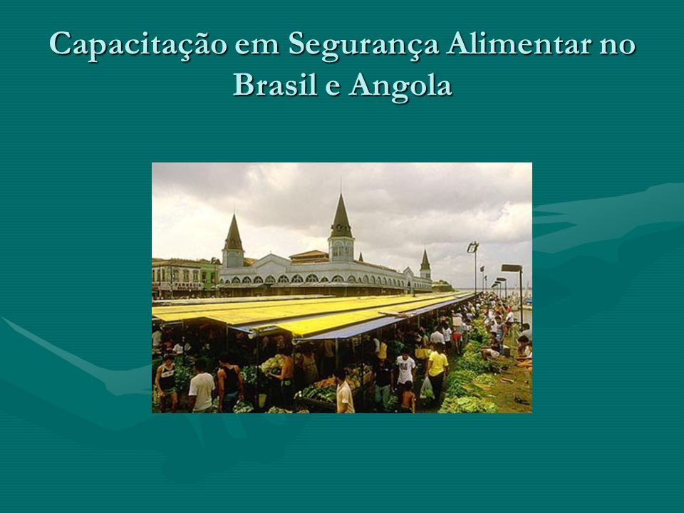 Capacitação em Segurança Alimentar no Brasil e Angola