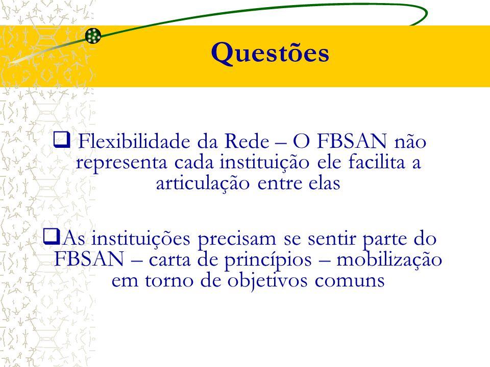 Questões  Flexibilidade da Rede – O FBSAN não representa cada instituição ele facilita a articulação entre elas  As instituições precisam se sentir parte do FBSAN – carta de princípios – mobilização em torno de objetivos comuns