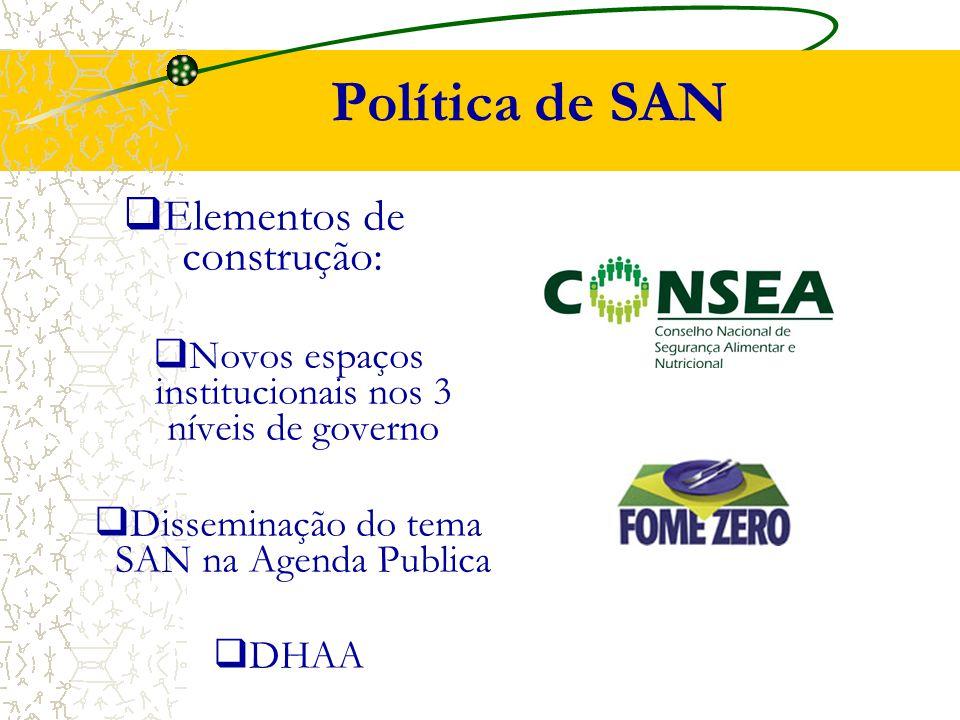 Política de SAN  Elementos de construção:  Novos espaços institucionais nos 3 níveis de governo  Disseminação do tema SAN na Agenda Publica  DHAA