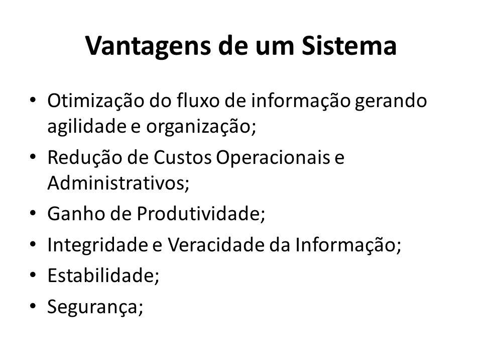 Vantagens de um Sistema Otimização do fluxo de informação gerando agilidade e organização; Redução de Custos Operacionais e Administrativos; Ganho de Produtividade; Integridade e Veracidade da Informação; Estabilidade; Segurança;