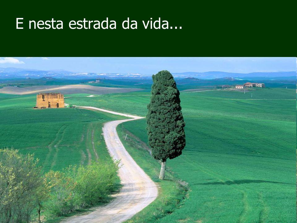 E nesta estrada da vida...