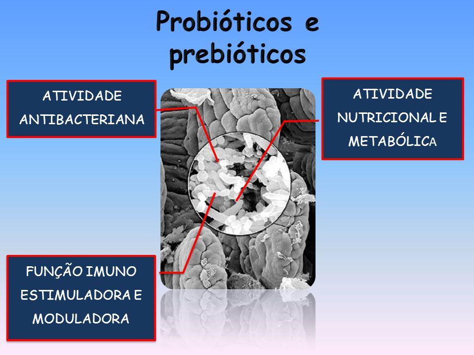 ATIVIDADE ANTIBACTERIANA FUNÇÃO IMUNO ESTIMULADORA E MODULADORA ATIVIDADE NUTRICIONAL E METABÓLIC A