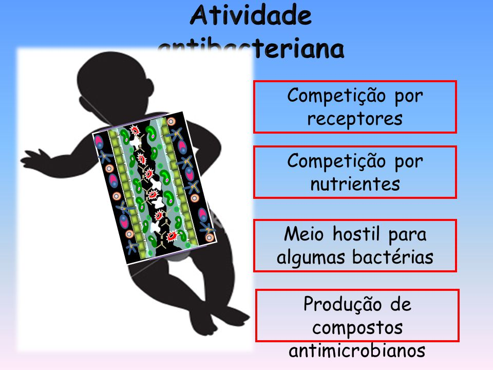 Meio hostil para algumas bactérias Competição por receptores Competição por nutrientes Produção de compostos antimicrobianos