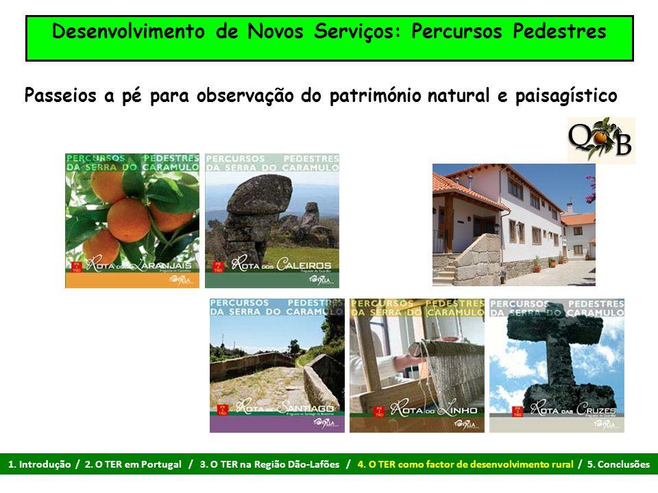 Desenvolvimento de Novos Serviços: Percursos Pedestres Passeios a pé para observação do património natural e paisagístico 1. Introdução / 2. O TER em