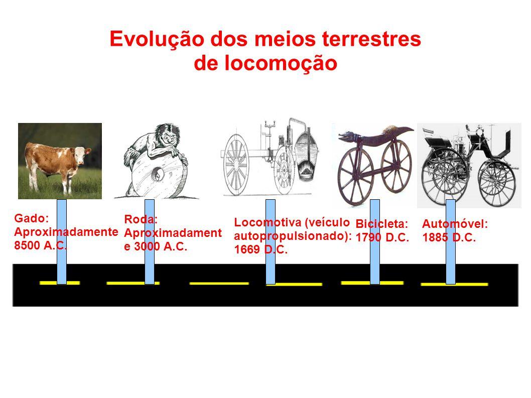 Para finalizar: É notável que a evolução dos meios de transporte terrestre são extremente perceptíveis.