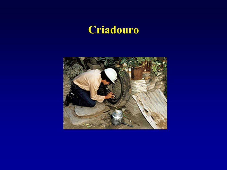 Criadouro