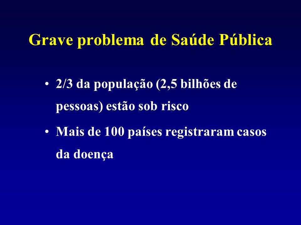Grave problema de Saúde Pública 2/3 da população (2,5 bilhões de pessoas) estão sob risco Mais de 100 países registraram casos da doença