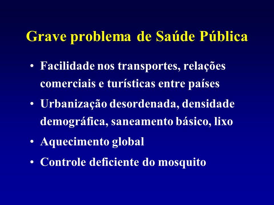 Grave problema de Saúde Pública Facilidade nos transportes, relações comerciais e turísticas entre países Urbanização desordenada, densidade demográfi