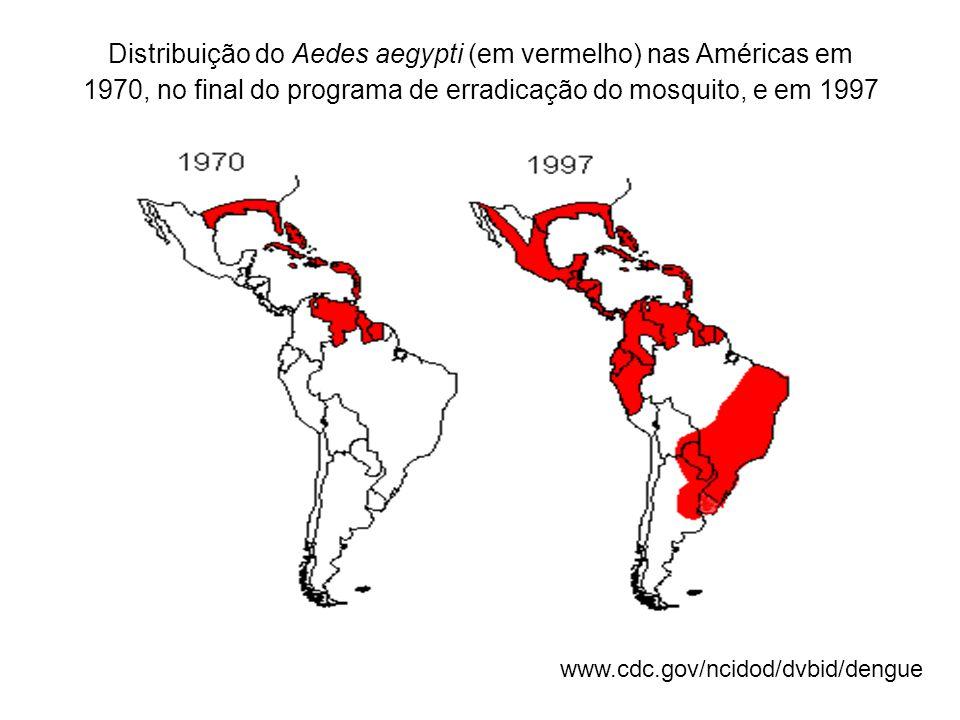 Distribuição do Aedes aegypti (em vermelho) nas Américas em 1970, no final do programa de erradicação do mosquito, e em 1997 www.cdc.gov/ncidod/dvbid/