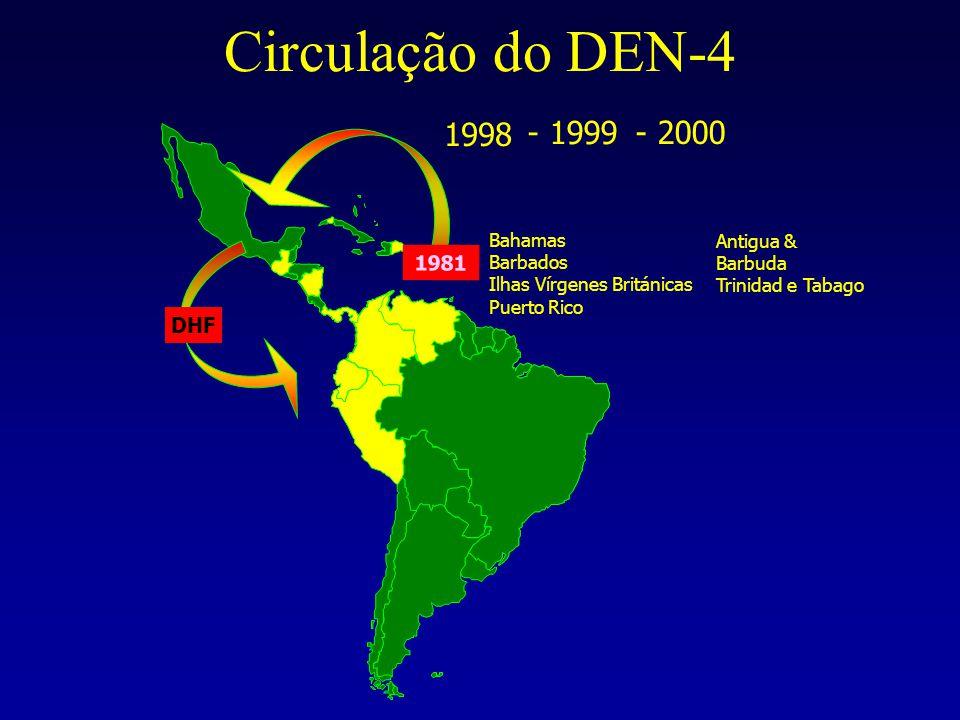 Circulação do DEN-4 Bahamas Barbados Ilhas Vírgenes Británicas Puerto Rico 1981 DHF Antigua & Barbuda Trinidad e Tabago 1998 - 1999 - 2000