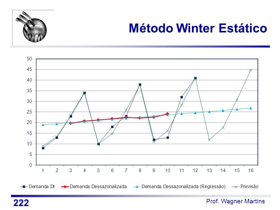Prof. Wagner Martins Método Winter Estático 222