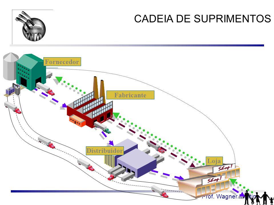 Prof. Wagner Martins Fabricante Distribuidor Fornecedor Loja CADEIA DE SUPRIMENTOS