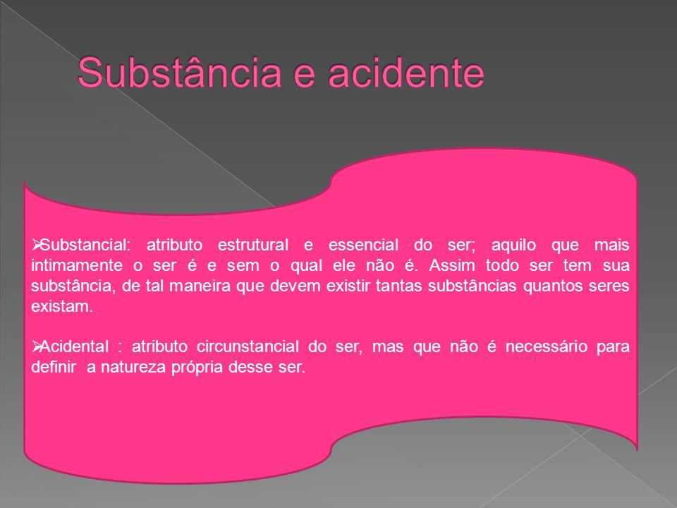  Substancial: atributo estrutural e essencial do ser; aquilo que mais intimamente o ser é e sem o qual ele não é.