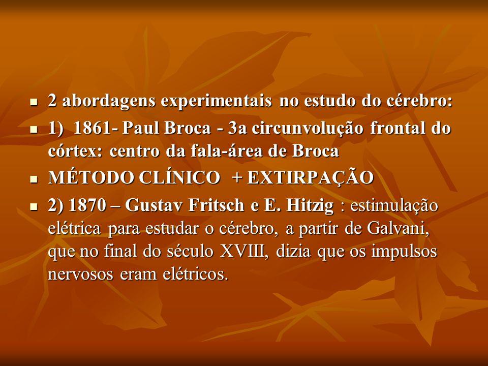 2 abordagens experimentais no estudo do cérebro: 2 abordagens experimentais no estudo do cérebro: 1) 1861- Paul Broca - 3a circunvolução frontal do có