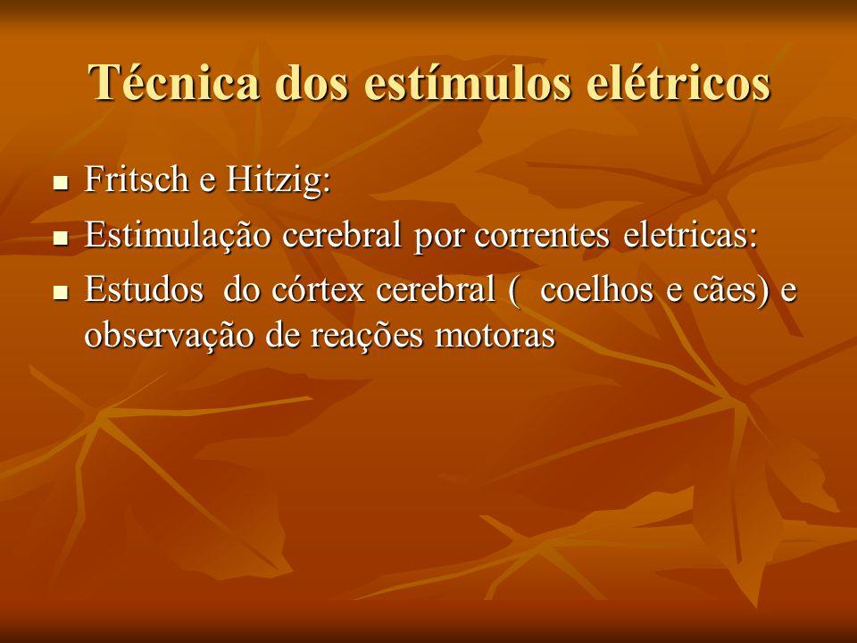 Técnica dos estímulos elétricos Fritsch e Hitzig: Fritsch e Hitzig: Estimulação cerebral por correntes eletricas: Estimulação cerebral por correntes e
